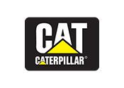 Cat || Adil A.Ş